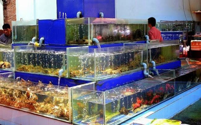 Trước giờ ngừng bán, nhiều nhà hàng tại Hà Nội livestream giải cứu hải sản