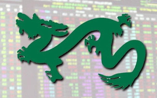 Quỹ tỷ đô do Dragon Capital quản lý tăng mạnh tỷ trọng tiền ngay trước nhịp điều chỉnh sâu của thị trường