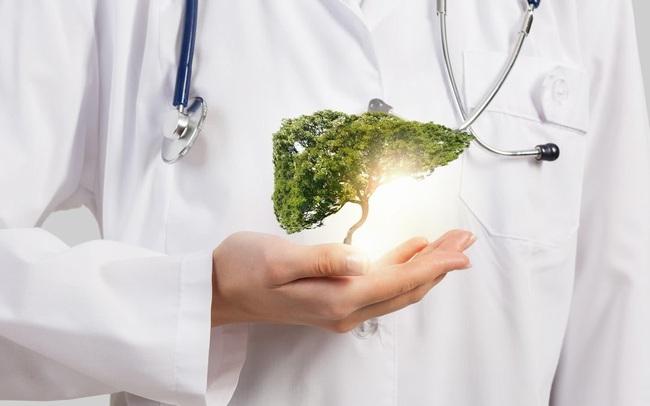 Gan là cơ quan trao đổi chất lớn nhất của cơ thể con người, bạn đã biết cách bảo vệ cho tốt chưa?