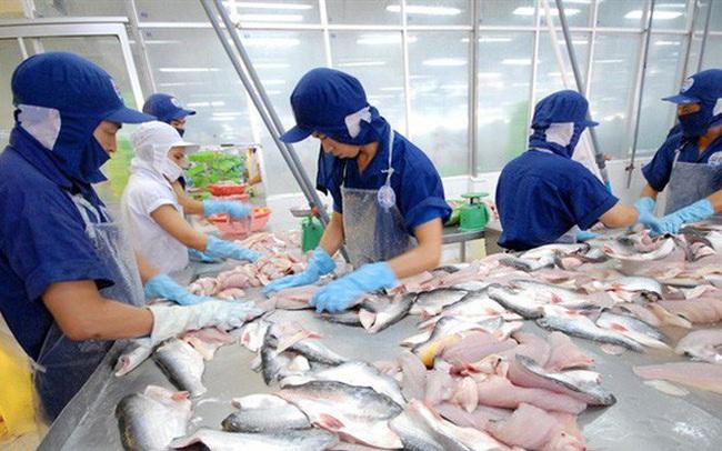 Thuỷ sản Nam Việt (ANV): Chi phí cước tàu, vận chuyển tăng đột biến kéo lùi lợi nhuận quý 2/2021