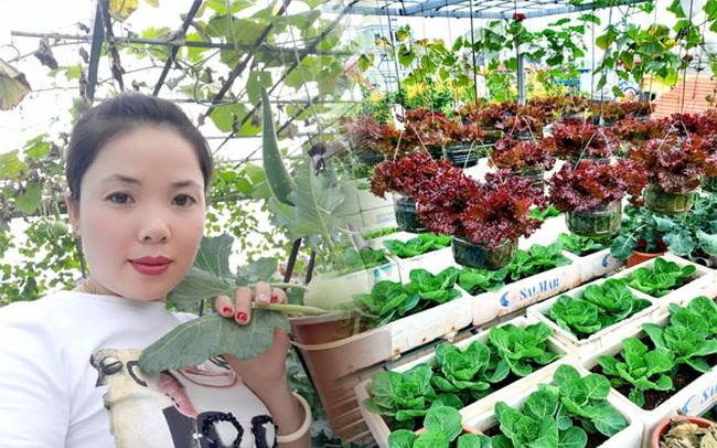 Khu vườn trên sân thượng đầy ắp rau quả xanh mướt ngay ở Hà Nội khiến ai cũng ước ao: Mùa nào thức nấy, rau xanh quả ngọt lại đảm bảo sạch sẽ!