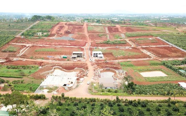 Dừng thủ tục hành chính về chuyển mục đích sử dụng đất tại Tp.Bảo Lộc