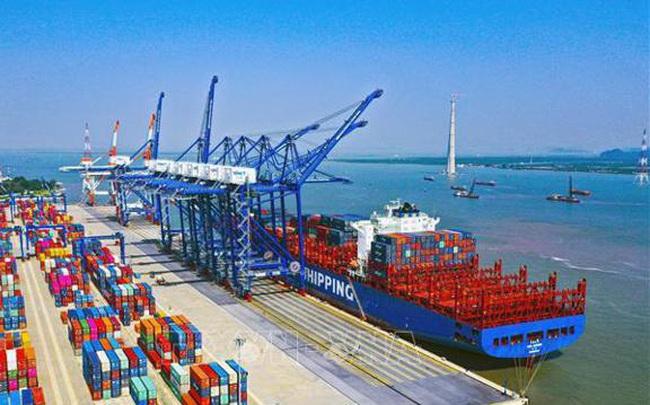 Gần 9.000 tỷ đầu tư Cảng tổng hợp quốc tế Long Sơn tại Bình Định