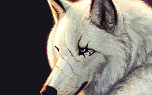 """5 loại người tuyệt đối không nên kết giao, bởi nếu thân tình sẽ không khác gì """"nuôi sói trong nhà"""""""
