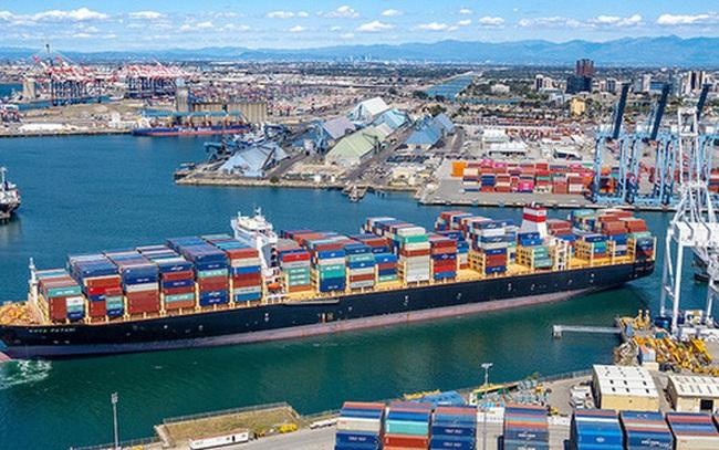 Hãng tàu lớn thứ ba thế giới cam kết không tăng giá cước tại Việt Nam