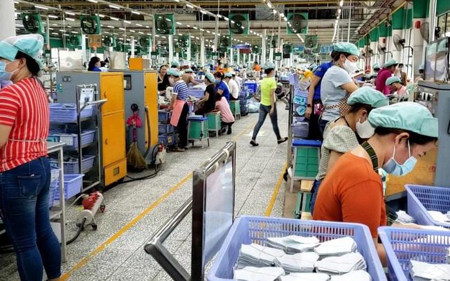 'Vùng xanh' phục hồi sản xuất