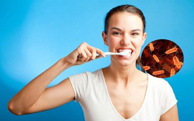 100 triệu vi khuẩn đang sinh sống trên bàn chải đánh răng của bạn: Vệ sinh không đúng cách, nguy cơ mắc bệnh tăng cao
