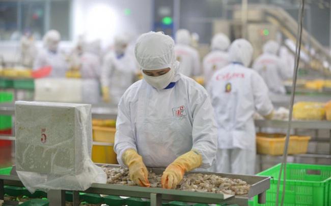 Chỉ 30 – 40% doanh nghiệp thủy sản có đủ năng lực để phục hồi sản xuất sau giãn cách