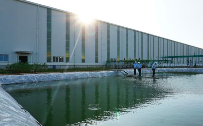 Nhận lại 30% vốn thoái từ Idico, Viglacera nâng sở hữu tại Công ty Kính nổi siêu trắng Phú Mỹ lên 65%
