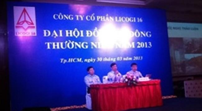 LCG: Dự trình kế hoạch lợi nhuận trước thuế 22 tỷ đồng