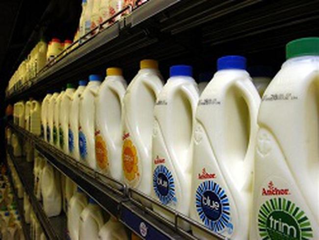 New Zealand thu hồi sản phẩm sữa trên toàn cầu