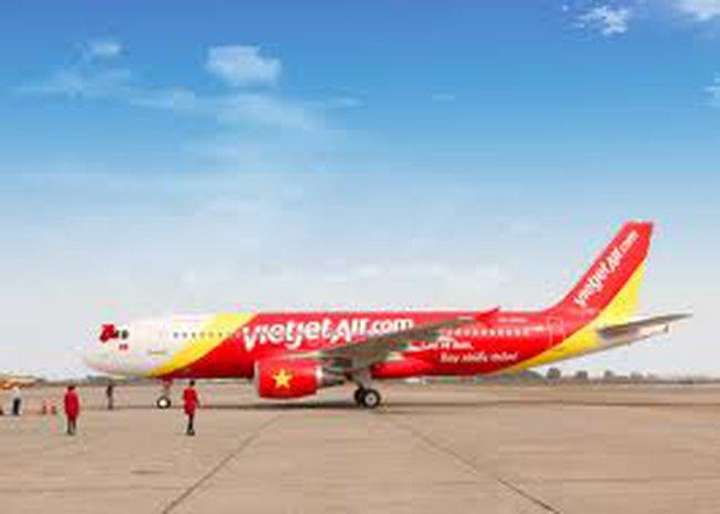 VietJetAir lên tiếng về sự cố 'chim trời va vào động cơ máy bay'