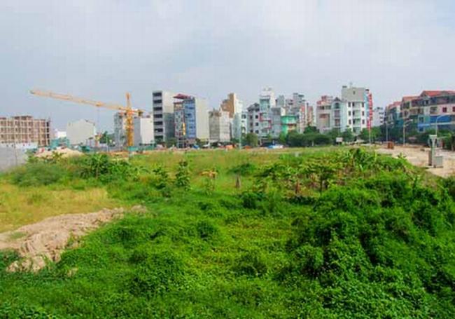 Rà soát quỹ đất 20% tại các dự án