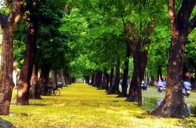 Hà Nội và Sài Gòn vẫn là địa điểm du lịch rẻ nhất châu Á cho 'Tây ba lô'