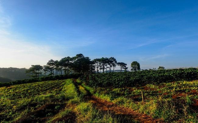 Dòng chảy đầu tư đổ về Bảo Lộc, đất nền tăng giá bền vững