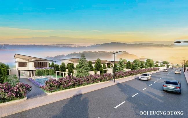 SunFlower Hill - khu đất nền biệt thự tại Bảo Lộc
