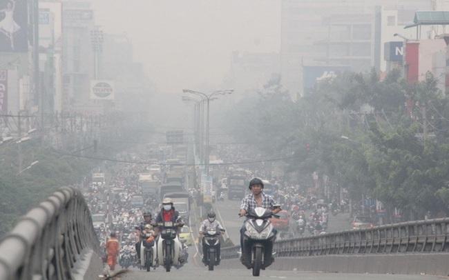 Lung Cleanser- Hỗ trợ giải độc phổi hoàn toàn từ thảo dược thiên nhiên
