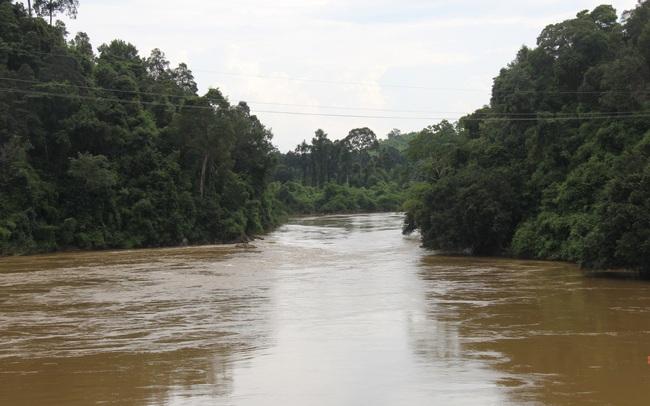 Tái lập Cầu Mã Đà – Động lực phát triển kinh tế tỉnh Bình Phước