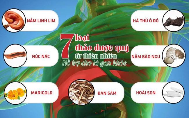 26 năm nghiên cứu công thức bảo vệ toàn diện lá gan của các nhà khoa học Việt