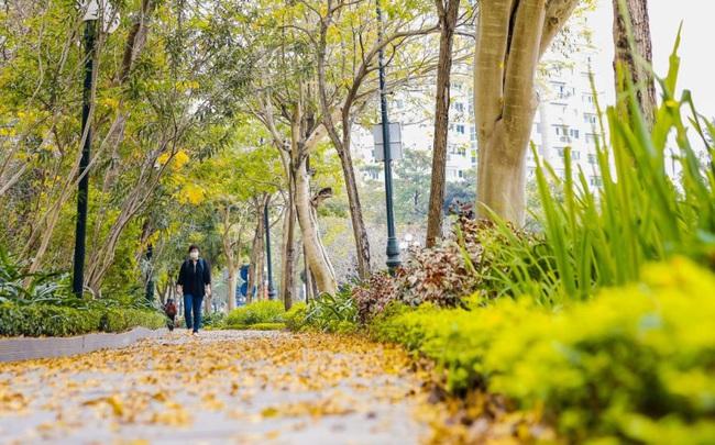 Ấn tượng sắc xuân tại Ciputra Hanoi