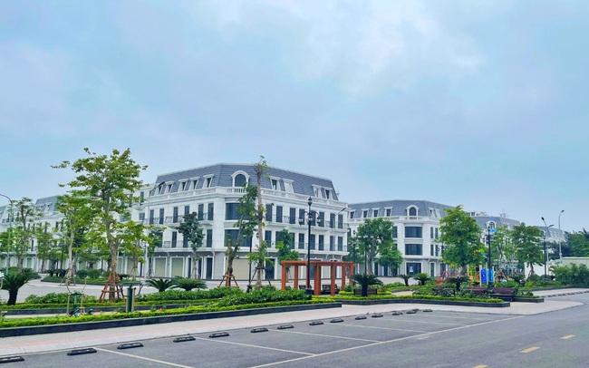 Vincom Shophouse Cẩm Phả - thỏi nam châm hút nhà đầu tư