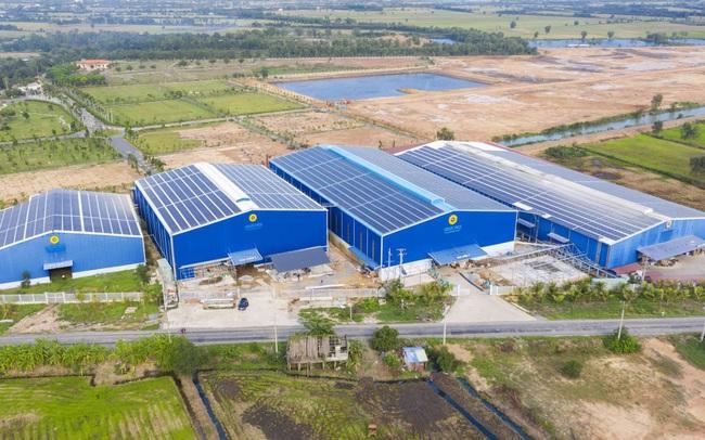 Tập đoàn Louis Agro thông báo mở 2 gói thầu tại nhà máy Đồng Tháp và An Giang