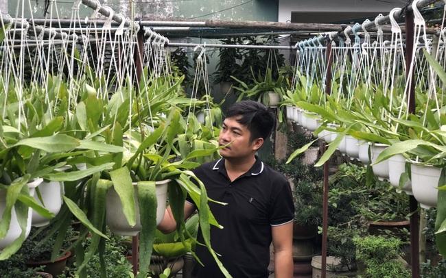 Nguyễn Ngọc Khánh: Nghiên cứu và khởi nghiệp thành công về phòng sinh trưởng cho cây giống