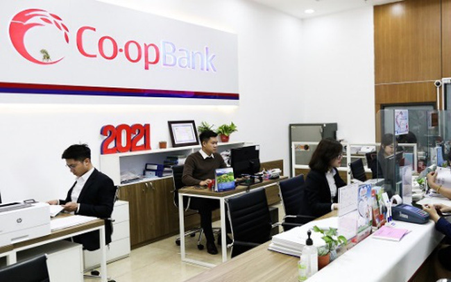 Ngân hàng Hợp tác xã Việt Nam: Vì sự phát triển bền vững hệ thống QTDND