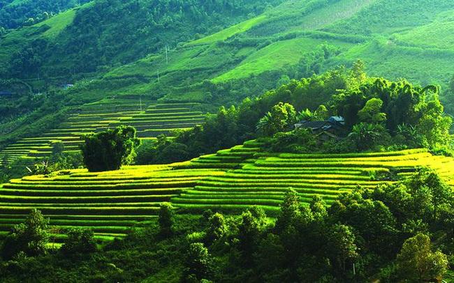 Tiềm năng BĐS nghỉ dưỡng Hòa Bình dưới góc nhìn của CEO Nguyễn Tiến Nam