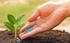 VNDirect: Doanh nghiệp sản xuất Ure hưởng lợi lớn nếu được thông qua chính sách thuế