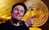 Elon Musk quay lưng, Bitcoin có lúc thủng 48.000 USD