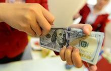 Tỷ giá trung tâm tiếp tục tăng mạnh, USD ngân hàng hạ nhiệt