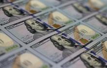 Dự trữ ngoại hối đã tăng thêm 4 tỷ USD trong năm nay, lên mức cao kỷ lục mới 84 tỷ USD
