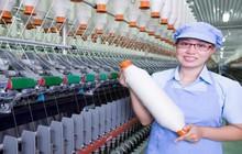 FTM - Động lực tăng trưởng mới của từ Nhà máy số 4 và mảng dệt
