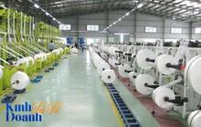Giấc mơ phổ biến túi nilon làm từ bột ngô tại Việt Nam