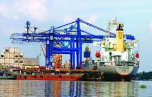 Tăng 10% giá dịch vụ ở cảng biển