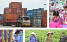 """Ông Vũ Khoan: Việt Nam phải chọn được """"gen trội"""" để phát triển kinh tế"""