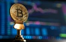 Tại sao cộng đồng blockchain cần một sandbox?