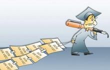 Cử nhân kinh tế: Làm gì để không thất nghiệp?