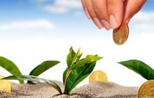 HBC, MBB, NTL, BCG, TNG, HDB, KSB, CMX, VNE: Thông tin giao dịch lượng lớn cổ phiếu