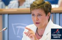 Sếp IMF: Thế giới đang chìm trong suy thoái