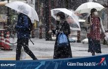 """CNBC: Đại dịch sẽ đẩy hầu hết các nền kinh tế vào tình trạng """"ngủ đông"""" tới 6 tháng"""