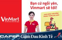 """Hệ thống Vinmart mở """"siêu thị"""" online giữa cao điểm phòng dịch COVID-19: Phục vụ hơn 300 mặt hàng tươi sống và nhu yếu phẩm khác, giao hàng 180 phút"""