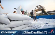 Thủ tướng: Việc xuất khẩu gạo cần phải xem xét kỹ lưỡng, thận trọng