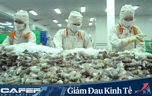 Tác động của Covid-19 tới ngành thủy sản Việt Nam và thế giới: Tôm sẽ bị ảnh hưởng nặng nhất, các mặt hàng khác thì sao?