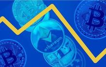 Các quỹ phòng hộ tiền mã hóa đang nỗ lực phục hồi sau các đợt báo tháo