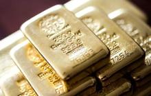 Hai đứa trẻ phát hiện ra kho báu vàng thỏi khi giãn cách xã hội vì Covid-19