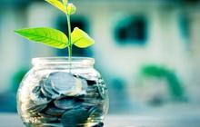Chẳng cần là Warren Buffett cũng biết: Đồng tiền khôn là đồng tiền đi trước, người thức thời là người biết đầu tư