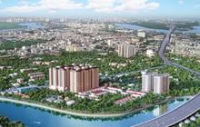 Giá căn hộ cao cấp hàng loạt dự án ở khu Nam Sài Gòn tăng hay giảm?