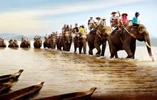 Vietourist (VTD) thông báo tặng tour du lịch 4 ngày 3 đêm cho cổ đông, cổ phiếu kịch trần